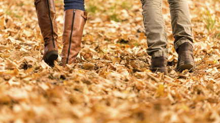 /content/dam/snrprivate/2016/September 2016/fall_leaves_walking_couple_1x2.jpg