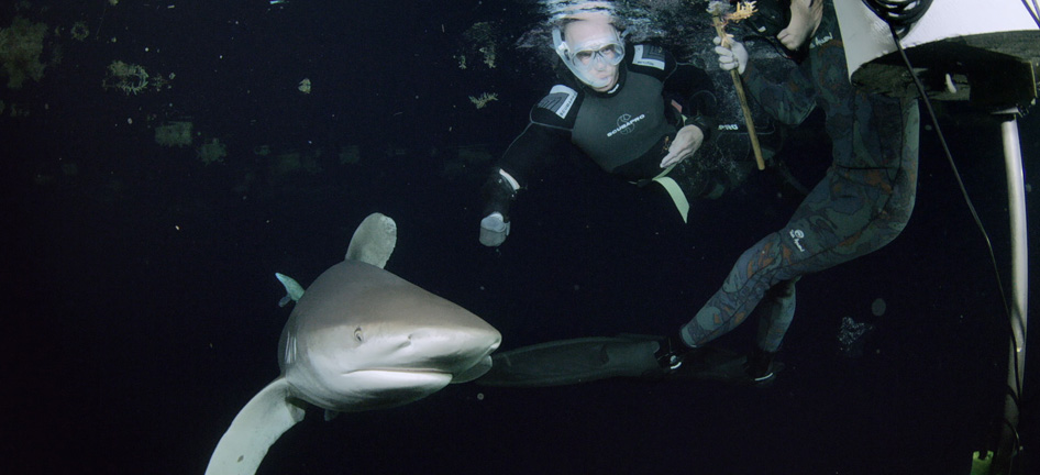 AT&T Provides Connectivity to Monitor Extreme Survival Experts in an Ocean Full of Sharks